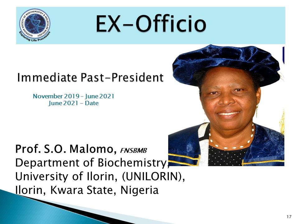 Prof. S.O. Malomo