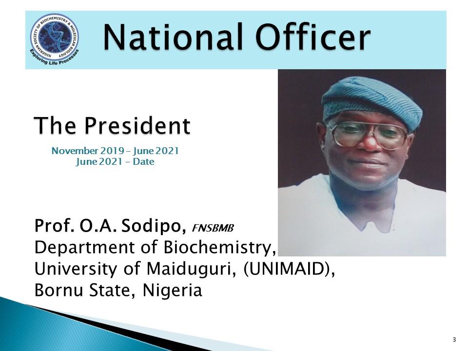 Prof. O.A. Sodipo
